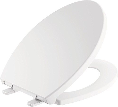 Delta Faucet Morgan Elongated Slow-Close White Toilet Seat with Non-Slip
