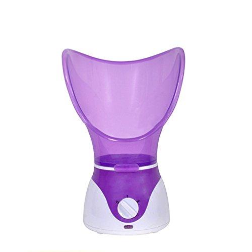 Denshine® Facial Steamer Face Thermal Spa Steamer Pores S...