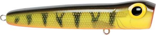 (Storm Chug Bug 06 (Naturistic Perch, Size- 2.5))
