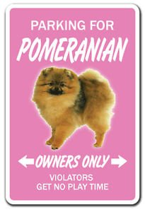 POMERANIAN Novelty Sticker dog pet parking road gift toy kennel breeder groomer vet (Dog Pet Gift Parking)