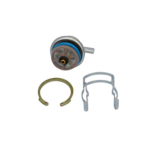 ection Pressure Regulator Fit Buick Pontiac Chevy GMC Cadillac ()