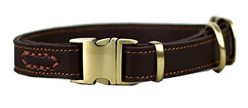 Tellpet Leather Dog Collar with Quick Release Buckle, Brown, Medium
