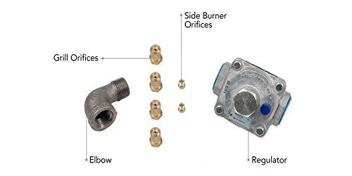 Lynx SEDNGK Sedona Liquid Propane to Natural Gas Conversion Kit (To Bbq Conversion Gas Propane Natural)