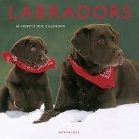Labradors 2012. Broschürenkalender: 16-Month Calendar