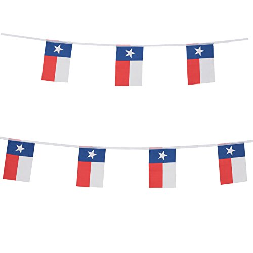 TSMD Texas State Flag Banner,100 Feet Small Mini Texas TX Lone Star Pennant Banner Flags String,Party Decorations Supplies for Bar,School Sports Event,International Festival - String Party Pennant