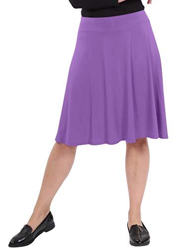 Kosher Grapes - Kosher Casual Women's Mid-Knee Length Full A-Line Skater Skirt Large Grape