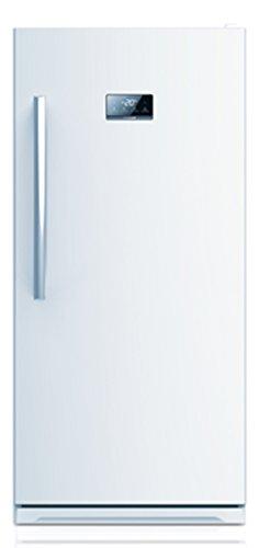 ECOAP FR 502 650 Upright Freezer product image