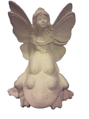 (Fairy on Frog 9