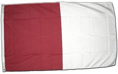 Digni drapeau Irlande Westmeath 90 x 150 cm
