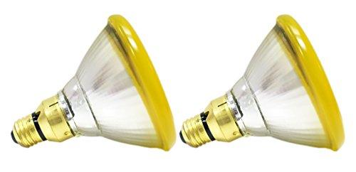 Free Replacement Bulb - GE Lighting 20945 85-Watt PAR38 Outdoor Incandescent Bug Lite