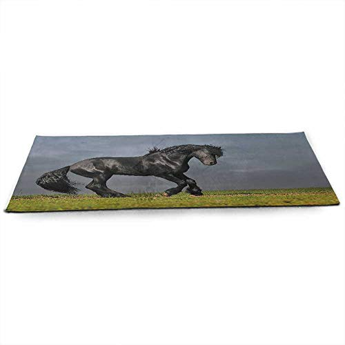Horse Decor Eco Friendly Yoga Mat Black Friesian Stallion Gallop in Sunset Stormy Weather Nature Outdoors for Joint Health and Physical Therapy W24 x L70 Green Black Grey