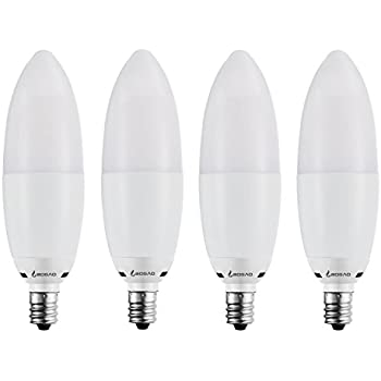 Rayhoo E12 Base LED Bulb Candelabra LED Bulbs 12W, Incandescent 80 ...