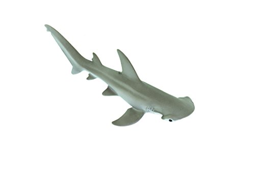 Ltd Safari Toob Sharks (Safari Ltd Wild Sealife – Bonnethead Shark – Realistic Hand Painted Toy Figurine Model – Quality Construction from Safe and BPA Free Materials – For Ages 3 and Up)