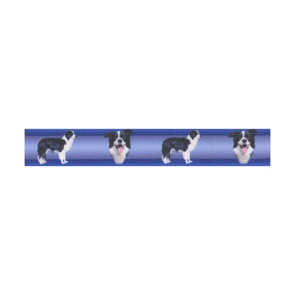 Country Brook Design 7/8 Inch Border Collie Grosgrain Ribbon, 5 Yards 1