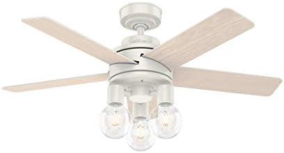 Hunter Hardwick Indoor Ceiling Fan