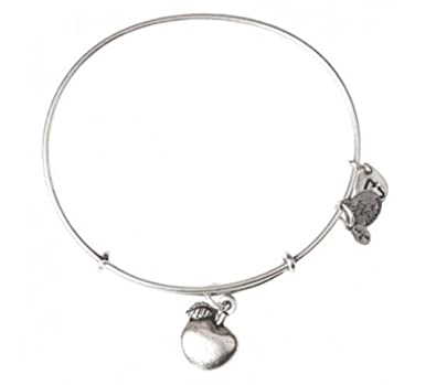 c2cb88b7e4d71 Alex and Ani Women's Apple Of Abundance Charm Bangle Rafaelian Silver Finish