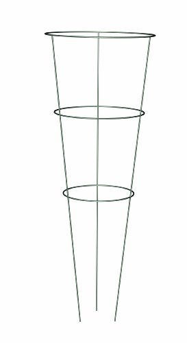 Panacea Products 89716 Heavy Duty Galvanized Tomato Cage and Plant Support, 33-Inch by Panacea Products