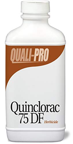 Quinclorac 75 DF Selective Herbicide Equivalent to Drive quali-1014 (Best Herbicide For Crabgrass)