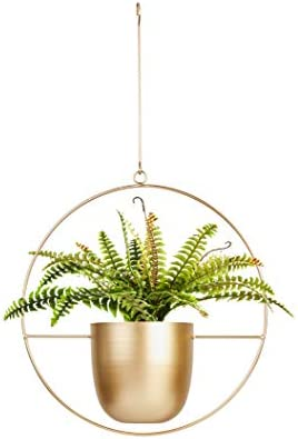 Fieren Indoor Wall Hanging Planter Gold Hanging Planter Wall Planter Hanging Plant Pot Metal Round Hanging Planter 6in Hanging Pot Mid Century Plant Holder For Indoor Outdoor Hanging Decor Amazon Com Au Lawn Garden