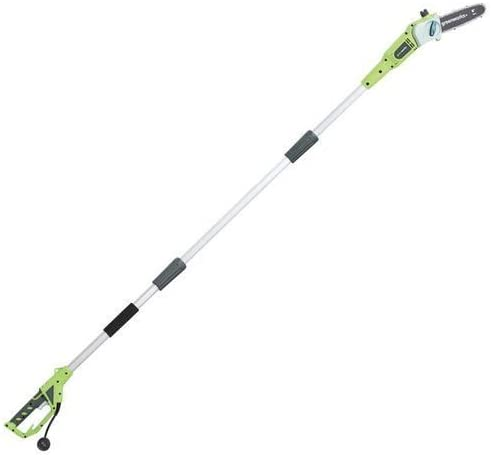 Greenworks Electric Corded Pole Saw
