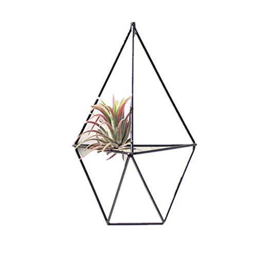 PLANTS Hanging Storage Rack Vase Planter Wall Decoration Metal Geometric Pendants Flower Pots Air Holder (Color : Black)