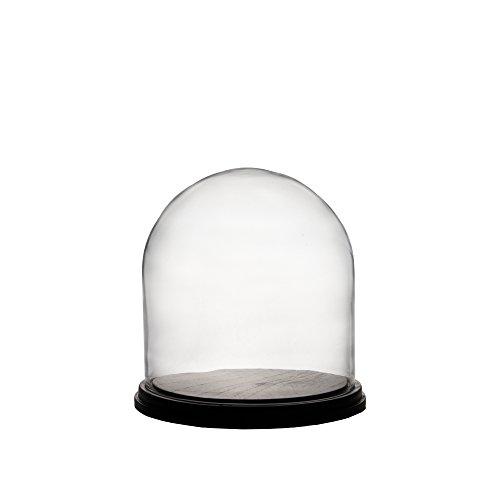 Dome Wood (CYS 11