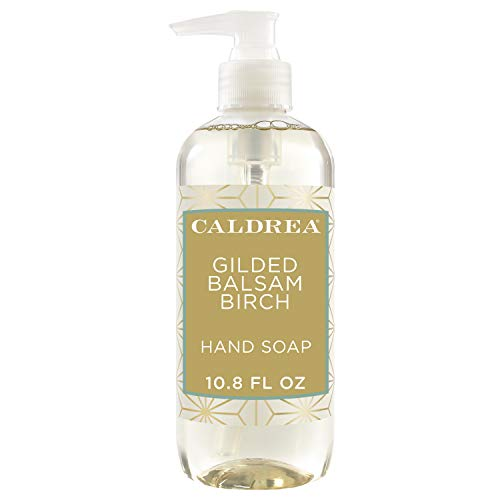 Caldrea Gilded Balsam Birch Hand Soap 10.8 oz