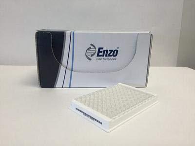 AK800-0001 - 1 Kit - Cyclic Nucleotide Phosphodiesterase Assay kit, Enzo Life Sciences - Each