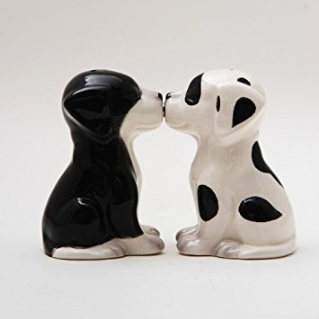 (Black White Pups Dog Ceramic Magnetic Salt and Pepper Shakers Collection Set)