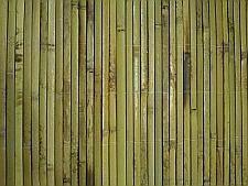 Sukkah Roof - Bamboo Mat - Schach Mat - Succa Cover