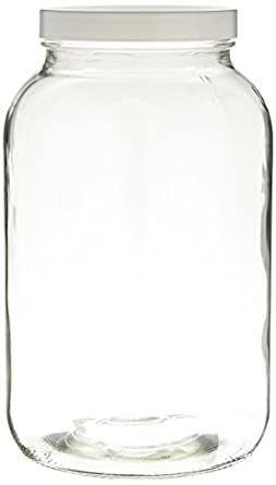 Home Brew Ohio One gal Wide Mouth Jar with Lid and Twin Bubble Airlock COMINHKPR104828