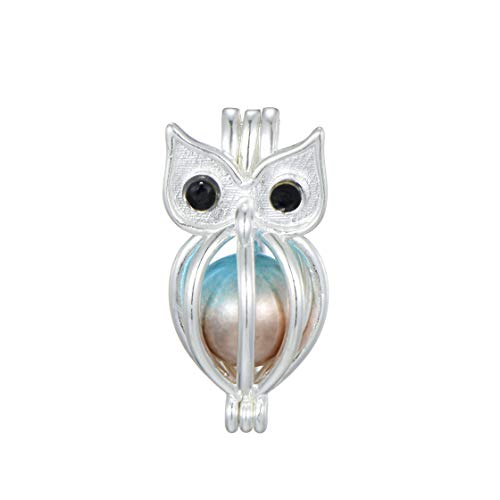 Valentine's Day Birthday Wendding Party Gift 10pcs Silver Plated Owl Pearl Cage Beads Cage Locket Pendant (Style 16)]()