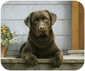 Chocolate Labrador On Porch Lab Dog Puppy Mouse Pad MousePad