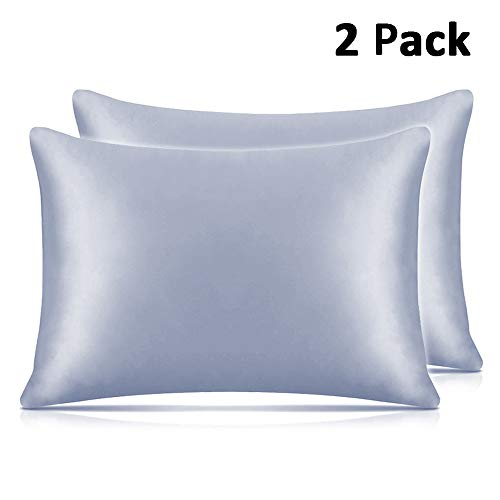 Adubor Silk Satin Pillowcase 2 Pack Silky Pillow Cases for Hair and Skin, Hypoallergenic Anti-Wrinkle, Super Soft and Luxury Pillow Cases Covers with Envelope Closure (Light Blue, 20x30) - Hair Pillowcase Satin