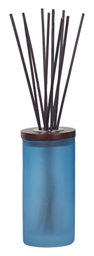 Chesapeake Bay Candle Mind & Body Reed Diffuser, Confidence + Freedom (Oak Moss Amber)