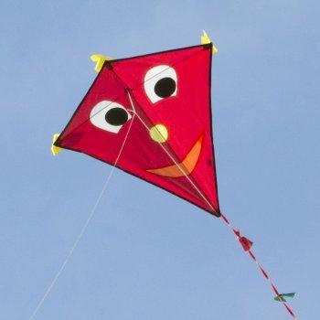 Cerf-volant monofil - Happy Eddy RED - pour enfants à partir de 3 ans - Dimensions : 67x70cm - incl. Ligne de 80m, queues multicolores Colours in Motion