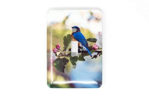 Bluebird and Appleblossom Light Switch Plate, Single