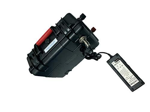 NKV 12.6v 60AH LiFePO4 deep Cycle Marine/RV/Golf car Battery