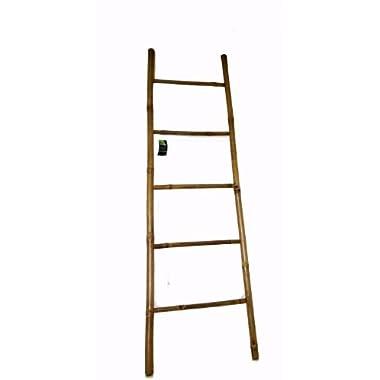 Bamboo Ladder, 72H