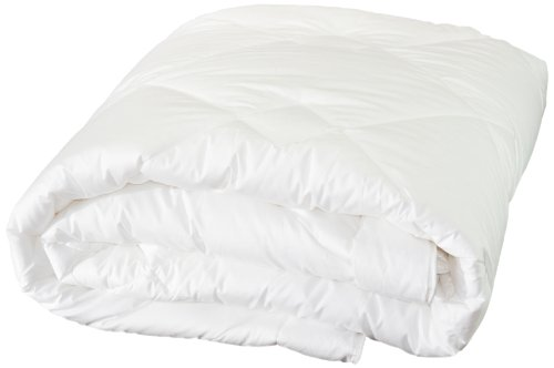 Highland Feather Manufacturing 36-Ounce Dreamtime Mulberry Silk Comforter, Queen, White