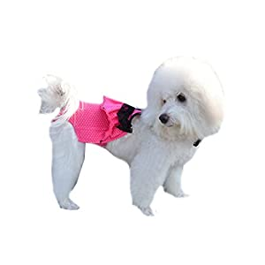 Rose Bikini Physical Pant for Pet Dogs Female Underwear Sanitary Pants