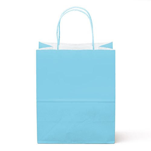 """24 Counts Food Safe Premium Paper and Ink Medium 10"""" X 8"""", Vivid Colored Kraft Bag with Colored Sturdy Handle, Perfect for Goodie Favor DIY Bag, Environmentally Safe (Medium, Light Blue)"""