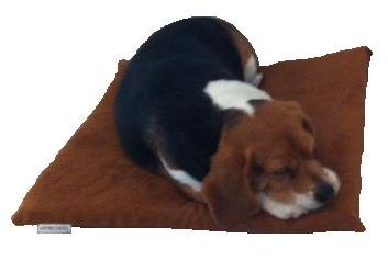 """Dogbed4less Two Pack 20""""X17""""X2"""" Small Chocolate color Suede"""