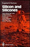 Silicon and Silicones : About Stone-Age Tools, Antique Pottery, Modern Ceramics, Computers, Space Materials, and How They All Got That Way, Rochow, Eugene G., 0387175652