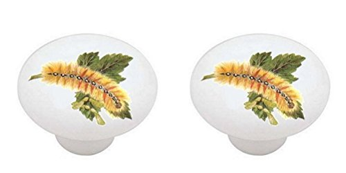 SET OF 2 KNOBS - Caterpillar #005 - Bugs Insects - DECORATIVE Glossy CERAMIC Cabinet PULLS Dresser Drawer (Caterpillar Drawer Pull)