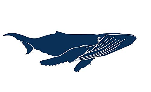 Whale Mural (Amaonm 23