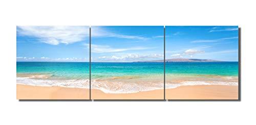 [해외]LB 아트 패널 바다 회화 인테리어 야자수 푸른 백 운 현대 미술 캔버스 회화 리조트 포스터 바다 풍경화 벽 걸이 장식 (나무 틀 완제품) 40 * 40cm * 3pcs ... / LB Art Panel Sea Painting Interior Palm Trees Blue Sky White Cloud Modern Art Ca...