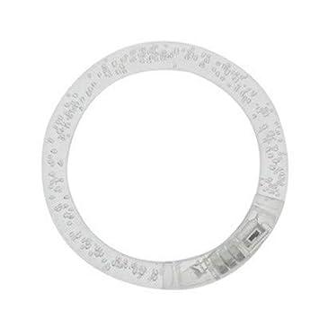 RISBAML Pulsera LED Genuino Led Dance Pulsera Reloj de ...