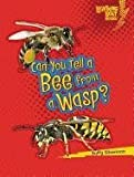 img - for Can You Tell a Bee from a Wasp? (Lightning Bolt Books: Animal Look-Alikes (Paperback)) book / textbook / text book