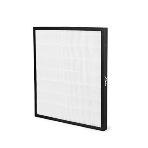 Hunter 30940 HEPA Replacement Filter